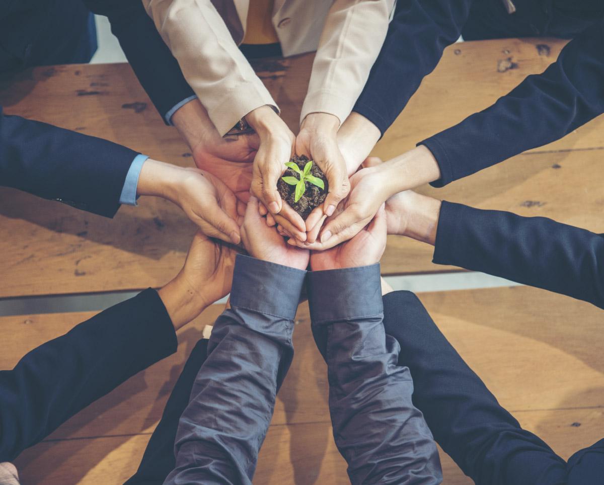 Webinar: La Sostenibilità come strumento di crescita per le aziende
